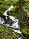Wahkeena to Multnomah Falls