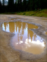 ::even the puddles here are beautiful::