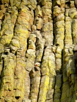 ::see that red dot?! CLIMBER!::