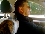 ::she misses dad from the backseat so cuddles up on his shoulder::