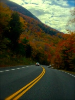 ::beautiful foliage driving in::