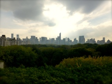 ::view from the met::