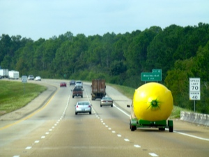 ::lemon on the road::