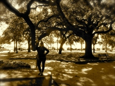 Love the live oaks