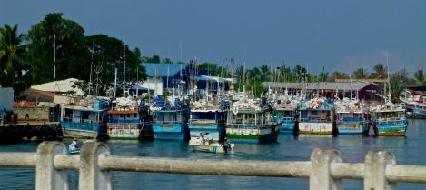 ::boats in Negombo::