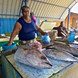 Big fish at Negombo
