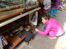 ::Varanasi puppies::