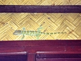 ::crappy iphone in the dark photo, but finally caught one of those noisy tuko lizards outside our room!::