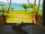 ::pups and that view! can't get enough::