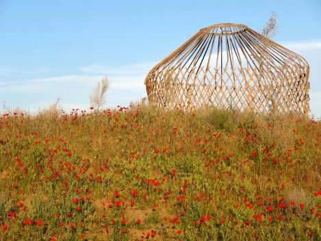 ::base of the yurt, poppies!::