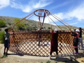 ::raising the (yurt) roof::