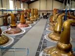 ::copper pot stills at Glenfiddich::