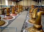 ::copper pot stills at Glenfiddich::