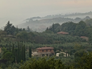 ::morning fog::
