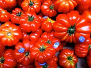 ::can't beat an Italian tomato::